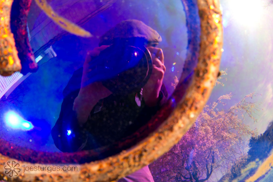 Self portrait reflection on glass orb.